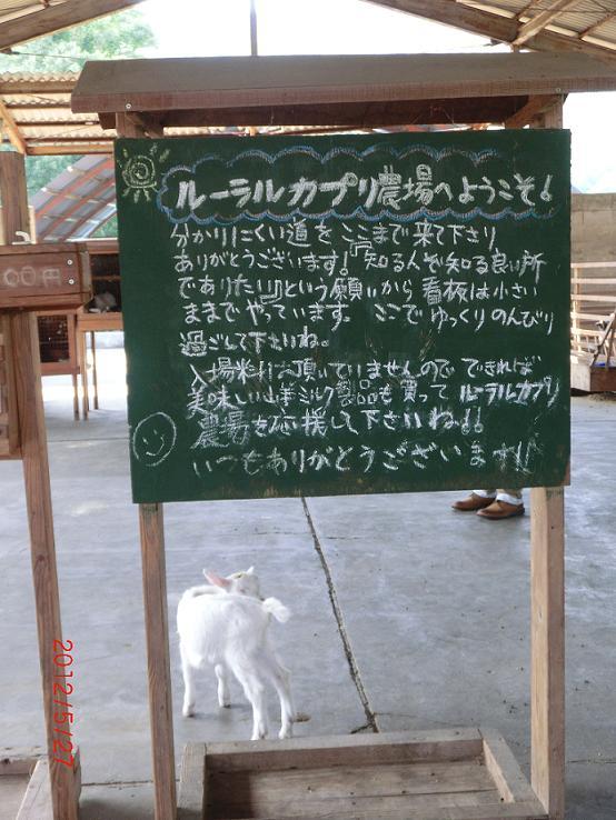 http://sabimoto.com/site/spot/archives/CIMG2184.JPG