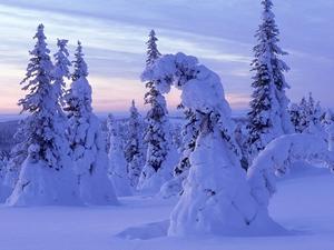 気温が・・・℃の時、フィンランド人はどんなふうにふるまうか、そのとき他国では何が起きているか